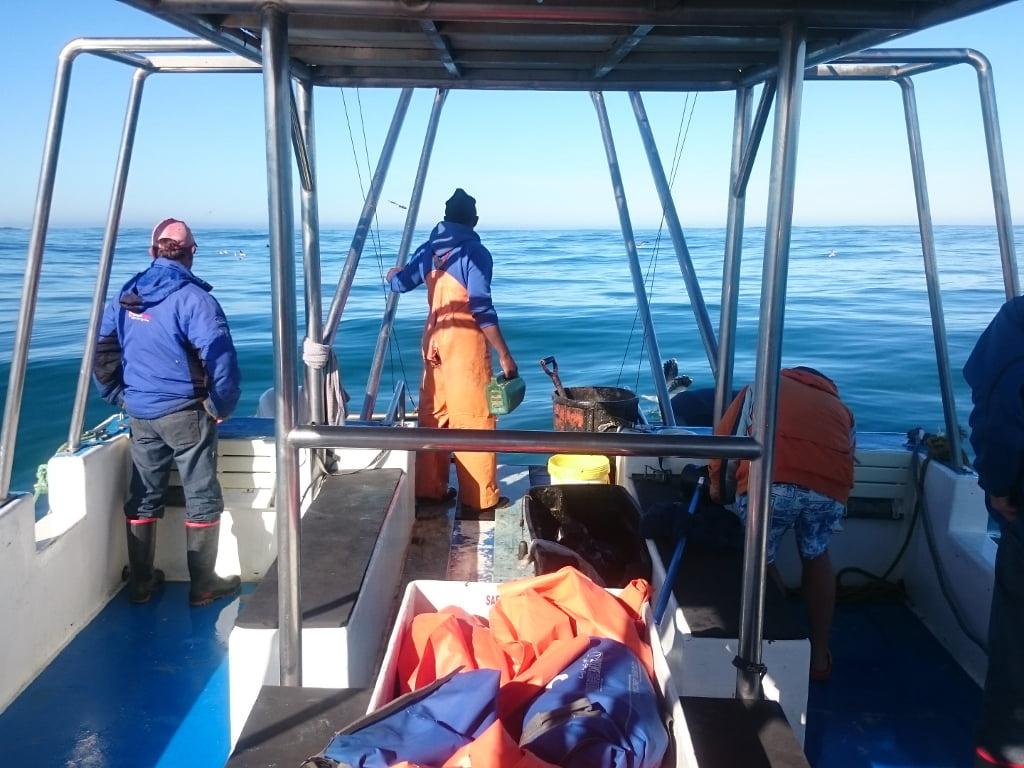 The crew preparing for shark cage diving in Gansbaai