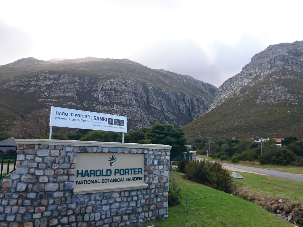 The unique botanical gardens at Harold Porter in Betty's Bay