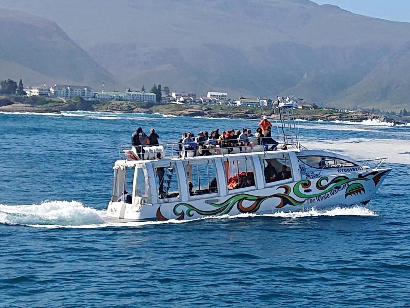 hermanus-whale-watching-boat-trips